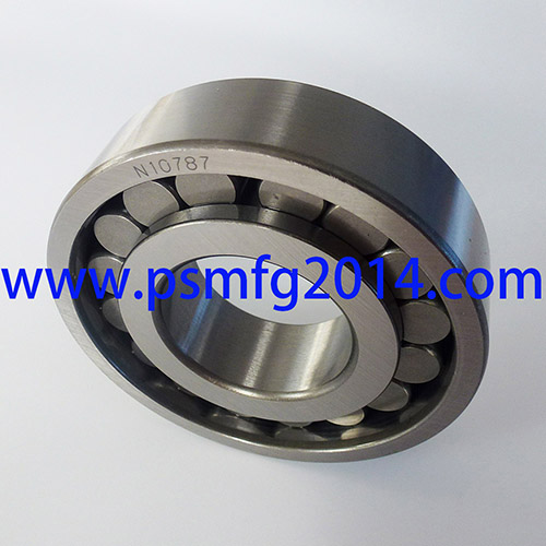 N10787 Gearbox Cylindrical Roller Bearings